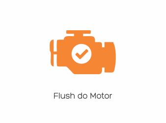 Flush do Motor